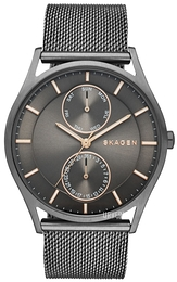 Skagen Holst Grå/Stål Ø40 mm SKW6180